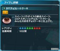 SPFチョコレートケーキ